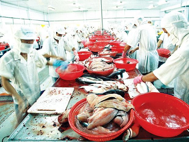 Chế biến thủy hải sản