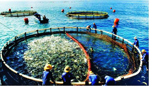 Thành phần có trong nuôi trồng thủy sản