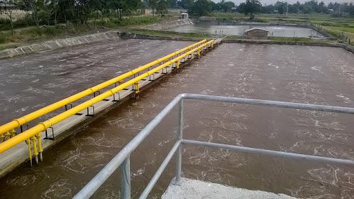 Tổng quan về hệ thống xử lý nước thải mía đường cho các nhà máy mía đường