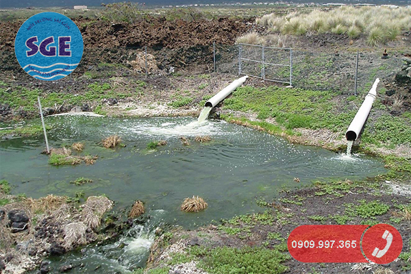 Nước thải sinh hoạt chưa xử lý