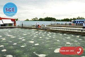Hệ thống xử lý nước thải cao su