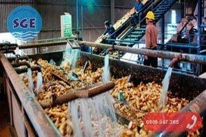 Hệ thống xử lý nước thải tinh bột sắn